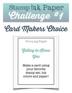 SIP-Any-Challenge-1-791x1024
