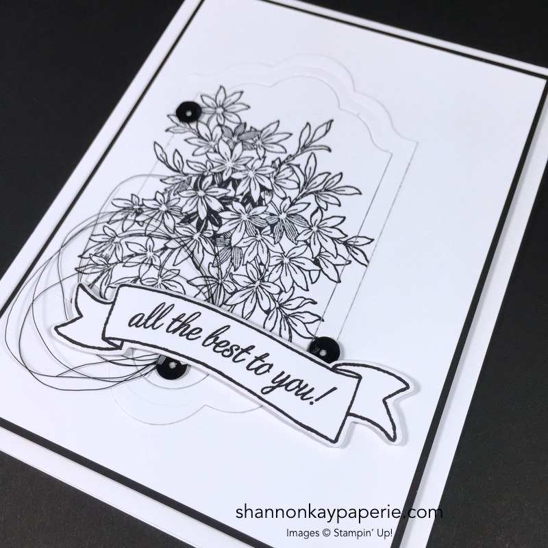 Stampin Up Awesomely Artistic Care Idea - Shannon Jaramillo Stampinup