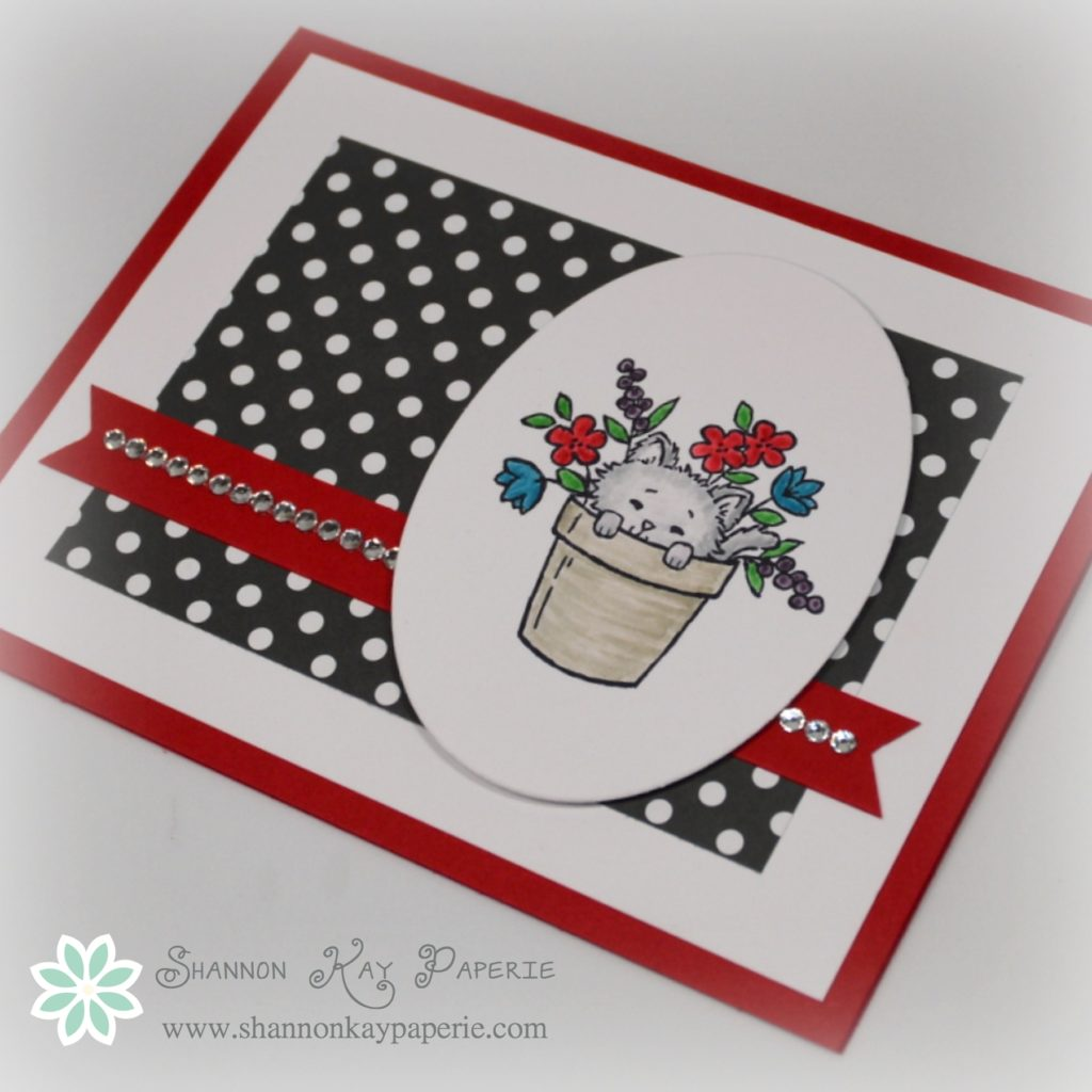 Stampin Up Pretty Kitty Card Idea - Shannon Jaramillo Stampinup