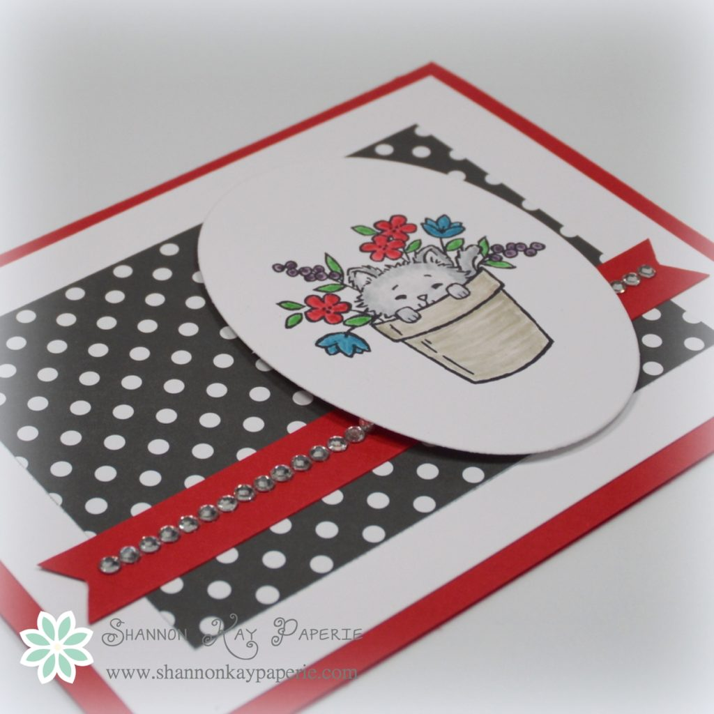 Stampin Up Pretty Kitty Card - Shannon Jaramillo Stampinup