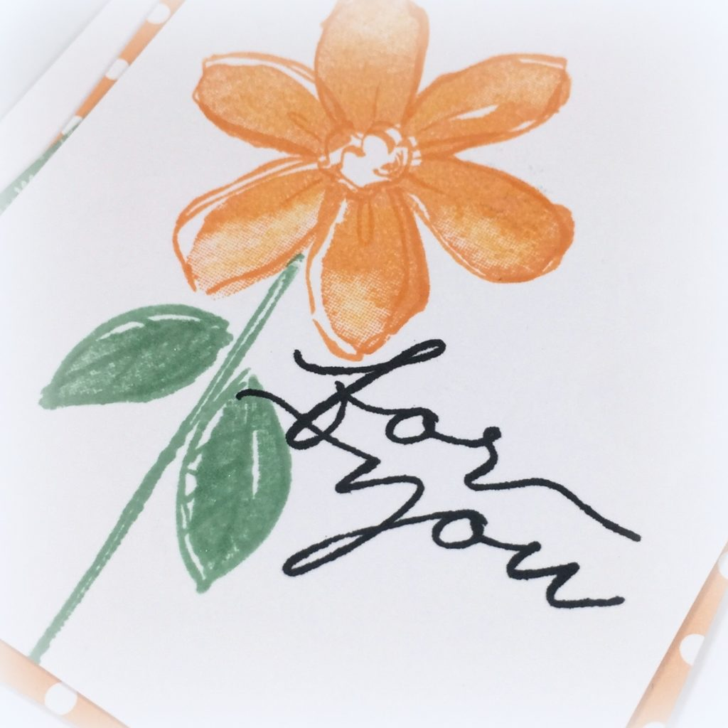 Stampin Up Garden in Bloom Just Because Cards Idea - Shannon Jaramillo Stampinup