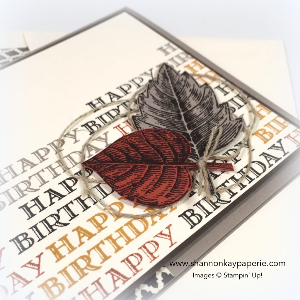 Stampin-Up-Guy-Greetings-Masculine-Birthday-Card-Ideas-Shannon-Jaramillo-Stampinup