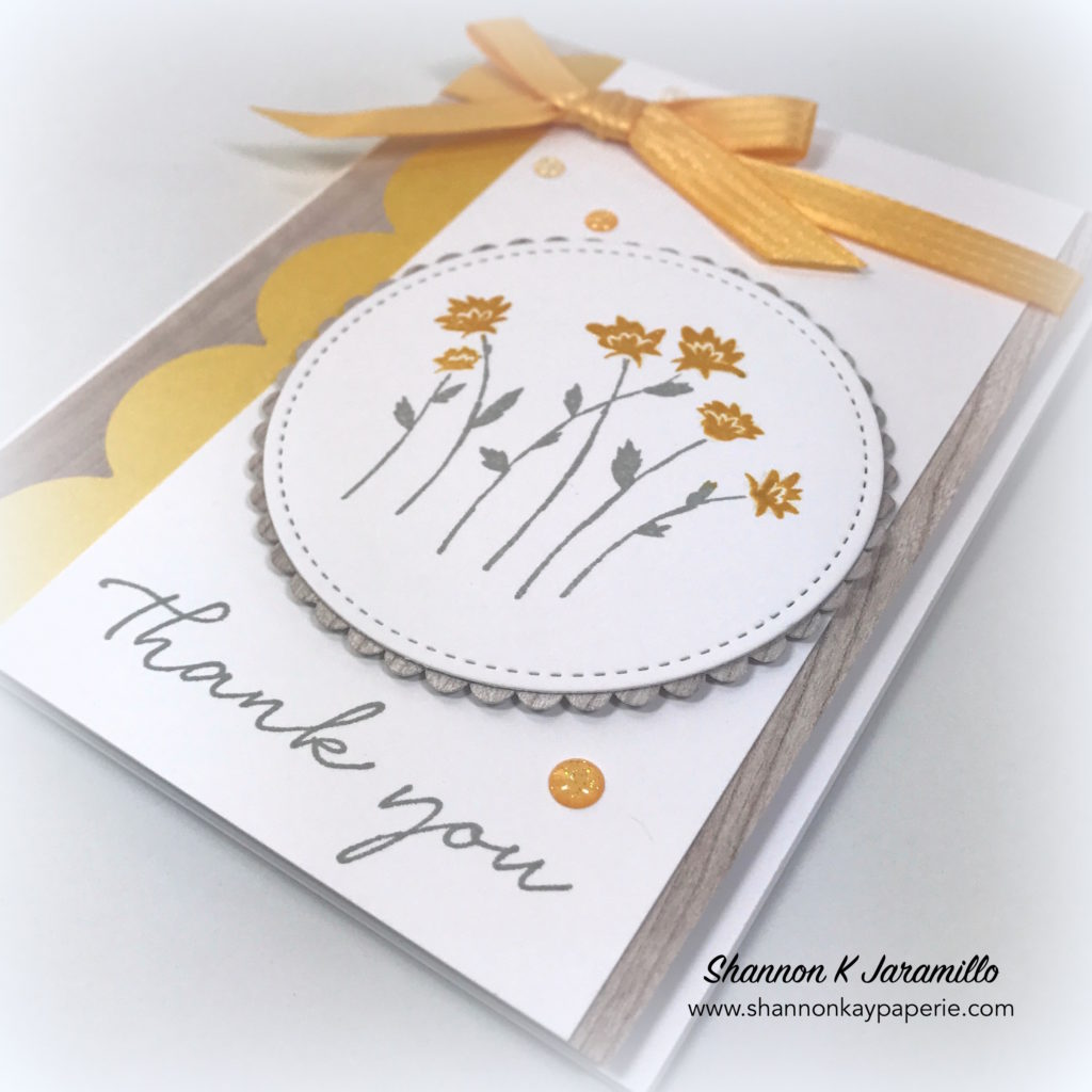 Stampin-Up-Background-Bits-Thank-You-Cards-Ideas-Shannon-Jaramillo-stampinup
